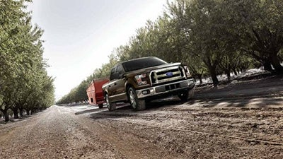 2017 ford f 150 in raleigh nc leith cars. Black Bedroom Furniture Sets. Home Design Ideas